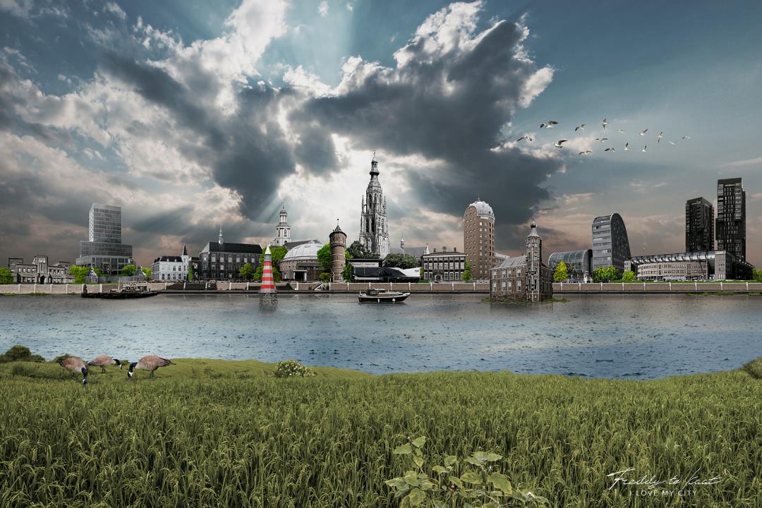 Skyline Breda zonder bladeren